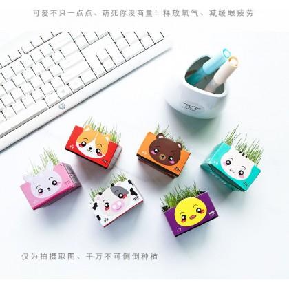 Maomi Cat Grass in Milk Carton Pot [2012191]